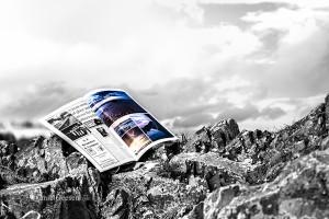 Skerries News Article